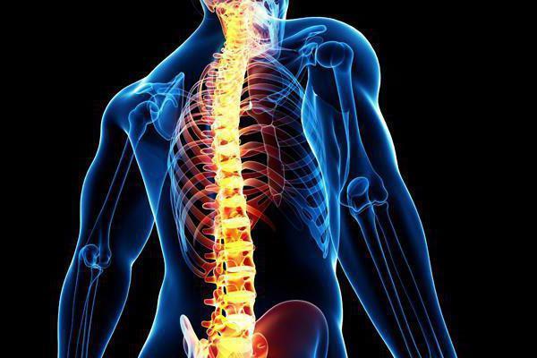 Le deviazioni della colonna vertebrale